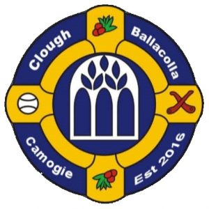 Clough Ballacolla Camogie